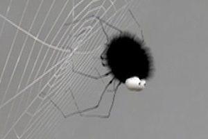 ดูหนัง Minuscule Season 1 เปิดโลกแมลงจิ๋ว ปี 1 ตอนที่ 64
