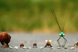 ดูหนัง Minuscule Season 1 เปิดโลกแมลงจิ๋ว ปี 1 ตอนที่ 75