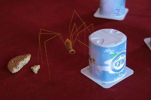 ดูหนัง Minuscule Season 2 เปิดโลกแมลงจิ๋ว ปี 2 ตอนที่ 15