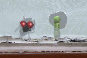 ดูหนัง Minuscule Season 2 เปิดโลกแมลงจิ๋ว ปี 2 ตอนที่ 4