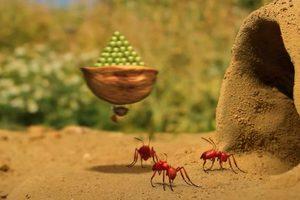 ดูหนัง Minuscule Season 2 เปิดโลกแมลงจิ๋ว ปี 2 ตอนที่ 48