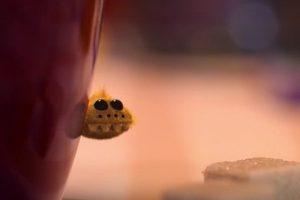 ดูหนัง Minuscule Season 2 เปิดโลกแมลงจิ๋ว ปี 2 ตอนที่ 91