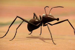 ดูหนัง Minuscule Season 1 เปิดโลกแมลงจิ๋ว ปี 1 ตอนที่ 2