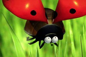 ดูหนัง Minuscule Season 1 เปิดโลกแมลงจิ๋ว ปี 1 ตอนที่ 21
