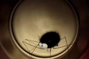 ดูหนัง Minuscule Season 1 เปิดโลกแมลงจิ๋ว ปี 1 ตอนที่ 31