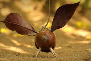 ดูหนัง Minuscule Season 2 เปิดโลกแมลงจิ๋ว ปี 2 ตอนที่ 31