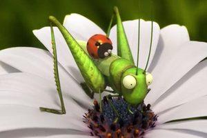 ดูหนัง Minuscule Season 2 เปิดโลกแมลงจิ๋ว ปี 2 ตอนที่ 40