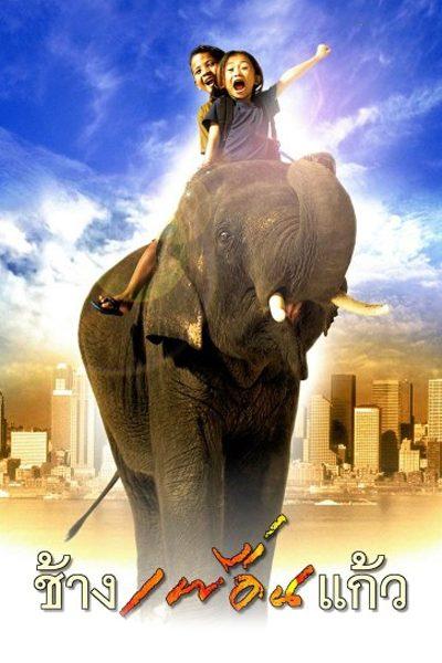 ช้างเพื่อนแก้ว my best friend chang