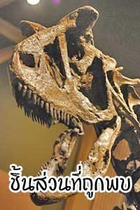 เปิดโลกไดโนเสาร์ร่องรอยชิ้นแรกที่ถูกพบ