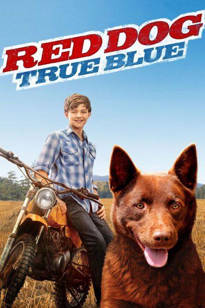 Red Dog เพื่อนซี้หัวใจหยุดโลก