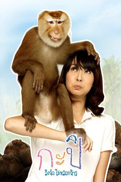 กะปิ ลิงจ๋อไม่หลอกจ้าว KAPI