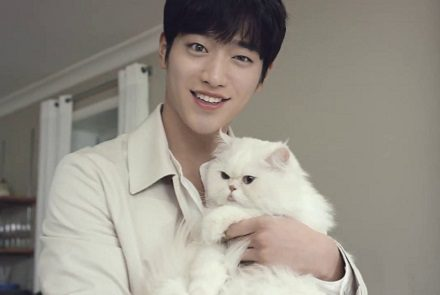 Superstar-Who-Love-Cats
